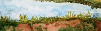 Card landscape 2924652
